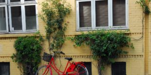 Comment réparer un pneu de vélo ?