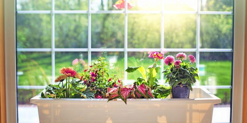 Comment bien choisir mon bac à fleurs ?